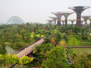 Gardens By The Bay © Jorge Cancela