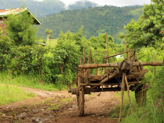Trekking from Kalaw to Inle 3 days tour