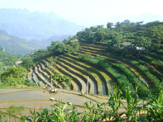 Si Ma Cai District
