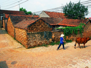 HaNoi – Duong Lam village and Ancient Houses (1 day)