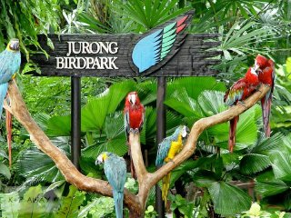 Jurong Bird Park Ticket