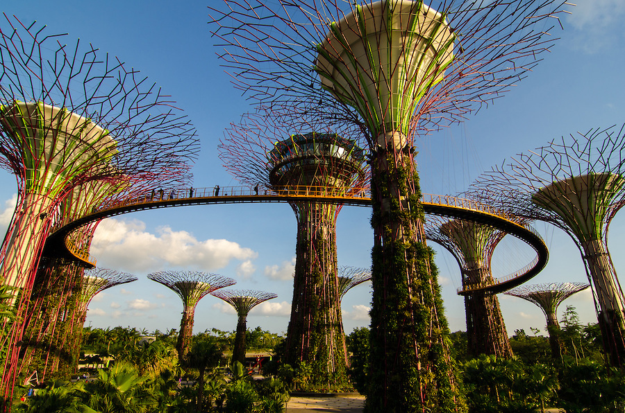 Garden By The Bay Ticket In Singapore Activity In Singapore Singapore Justgola