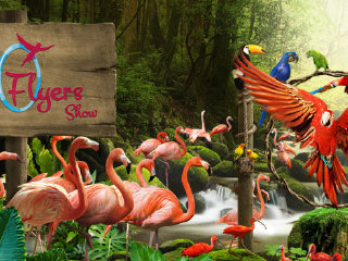 Attraction Combo: 3-in-1: Singapore Zoo + Night Safari + Bird Park Ticket
