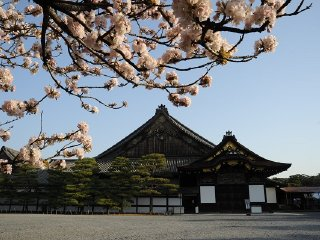 1-Day Kyoto Tour © japanican