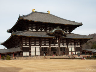 Todaiji Temple Cultural Center © Anggia Anggi