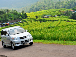 Private Transfer : Five Days Tours to Pemuteran , Singaraja , Amed and Ubud