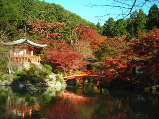 Kyoto For Just 2 Days © Lily