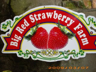 Big Red Strawberry Farm