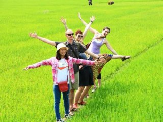 Hoi An Free Day Tours